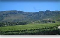 Western Cape destination